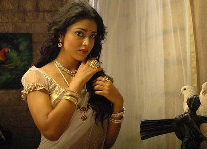 Shriya in Tamil Kannada bilingual 'Chandra'