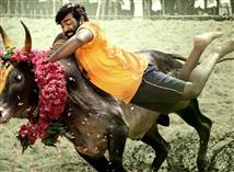 Karuppan TN Boxoffice Report