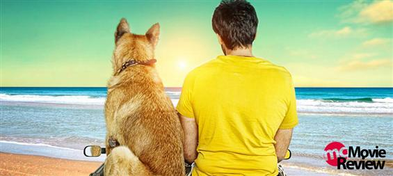 Naaigal Jaakirathai Review - A Crisp Bark - Tamil Movie Poster