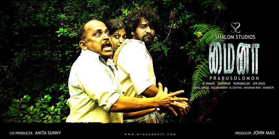 Mynaa Picture Gallery