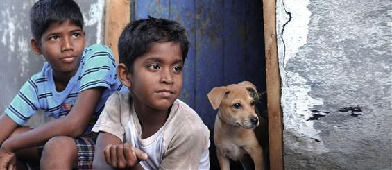 Kakka Muttai Video song - Sel Sel