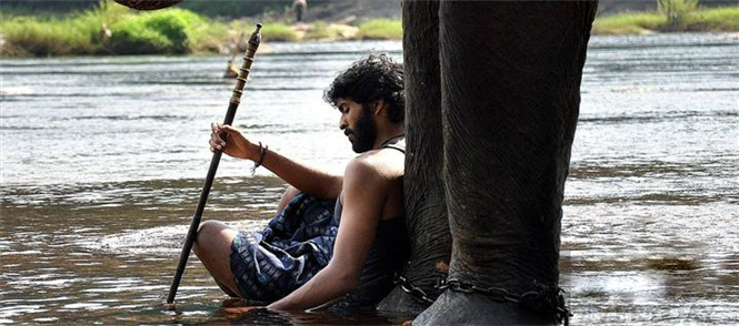 Kumki Review by Visitor