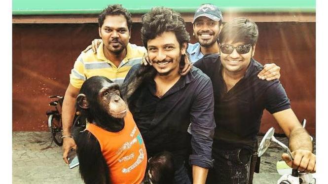 PETA makes an appeal to Boycott Jiiva's Gorilla!