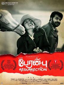 Peranbu - Movie Poster
